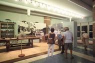 Il Museo della Marineria a Cesenatico