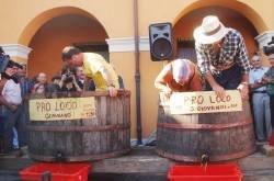Capodanno del Vino a San Giovanni in Marignano 2009