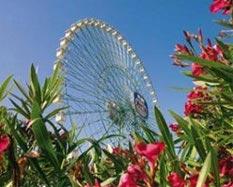 Mirabilandia Parco Attrazioni