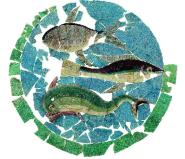 Mosaico della Domus del Chirurgo